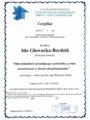 Certyfikat - Ida Głowacka-Berdzik